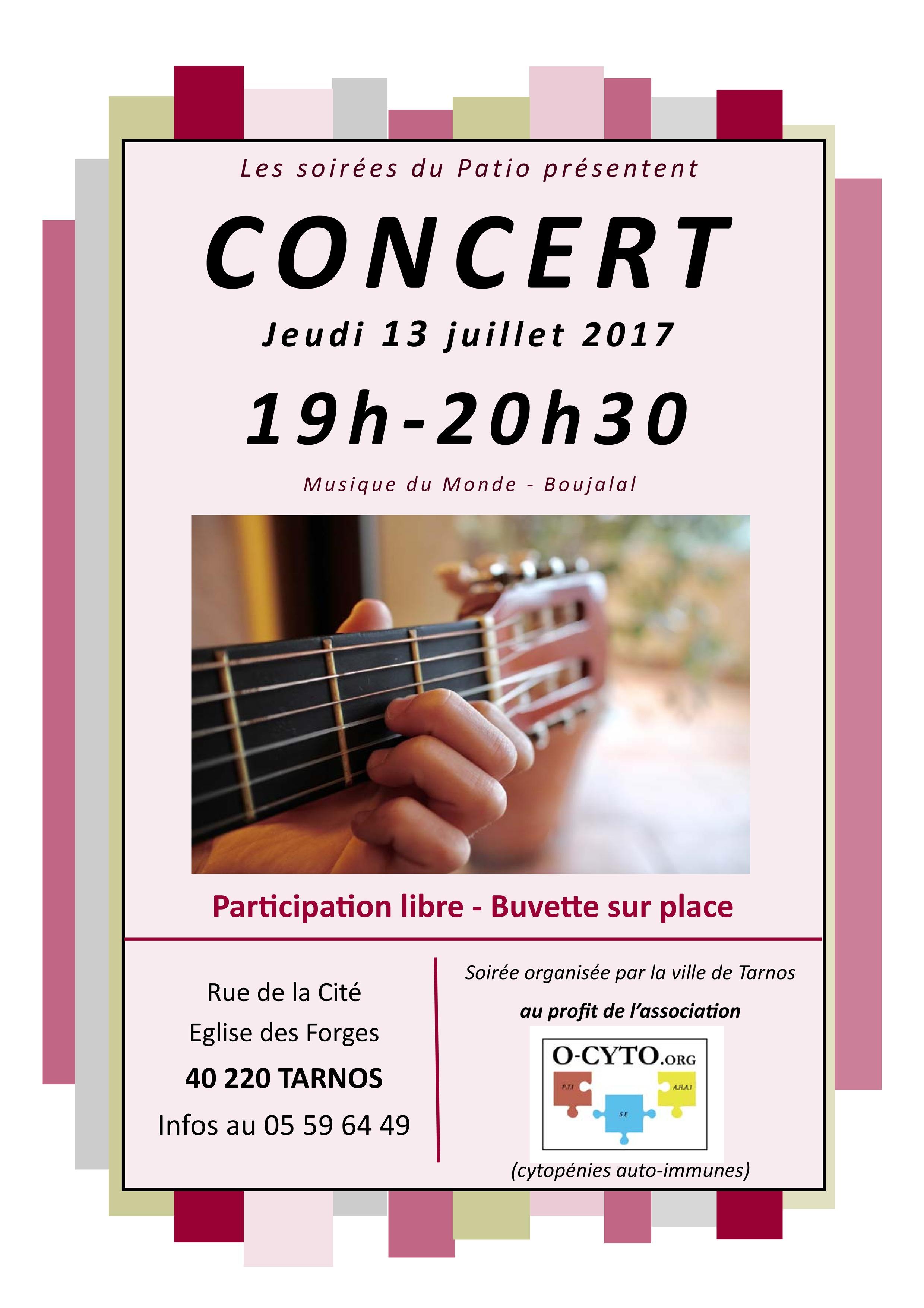 ocyto_concert_13-07-17